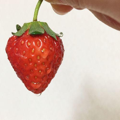 Strawberry I Love Strawberries 😚 いちご いちご 苺 一粒 Fruit