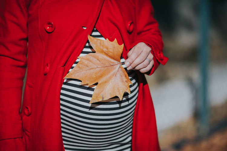 Close-up of red umbrella standing in autumn