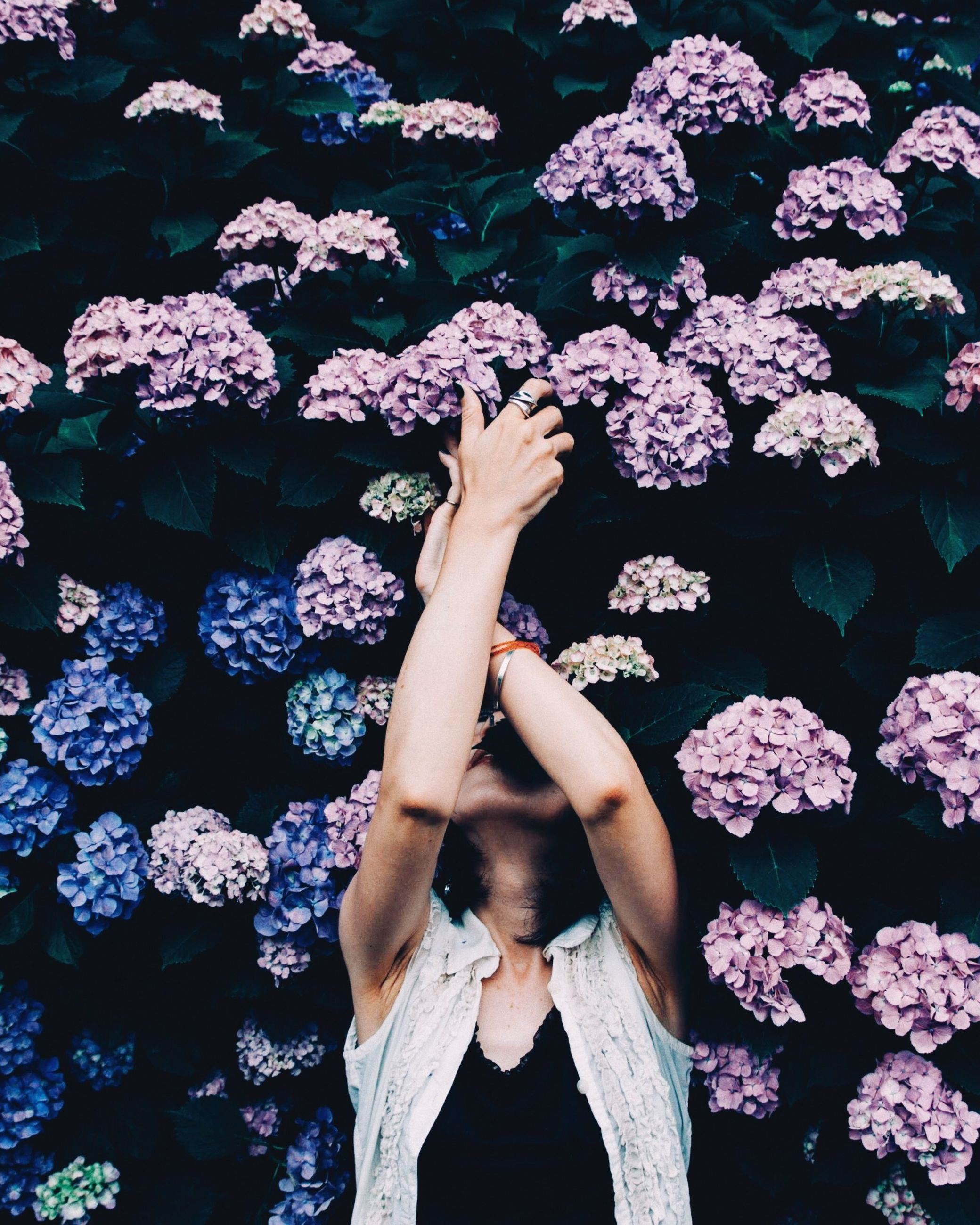 flower, flowering plant, one person, real people, lifestyles, plant, leisure activity, nature, vulnerability, fragility, standing, beauty in nature, women, high angle view, adult, day, human body part, freshness, pink color, hand, human arm, arms raised, bunch of flowers
