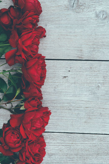 Decor Fashion Green Red Bouquet Close-up Color Directly Above Flower Flower Arrangement Flower Head Flowering Plant Fragility Freshness Gray Gray Background Growth High Angle View No People Outdoors Plant Roses Style Table Wood - Material The Still Life Photographer - 2018 EyeEm Awards