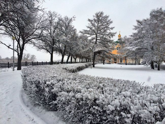 Россия Russia Рязань Ryazan Streetphoto Streetphotography зима 2016 Winter 2016 After Snow рязанский кремль Check This Out Hanging Out после снегопада Ryazan Kremlin зима Winter