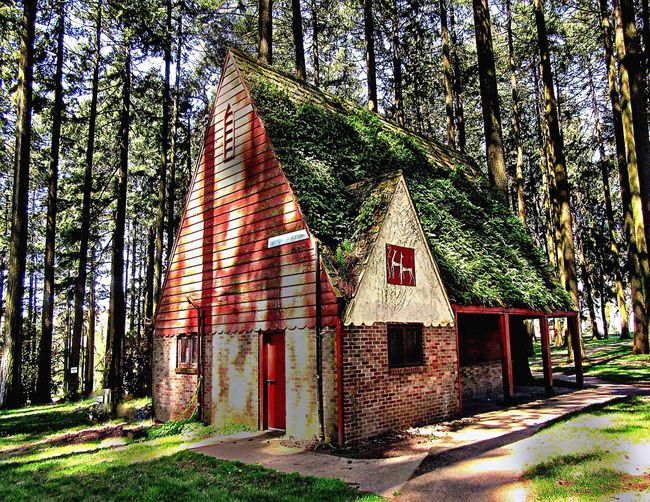 Abandoned City Parks Building in Portland, Oregon Grass On Roof Portland Oregon Abandoned Park Building Architecture Built Structure Tree Building Day No People Building Exterior Sunlight Outdoors Shadow