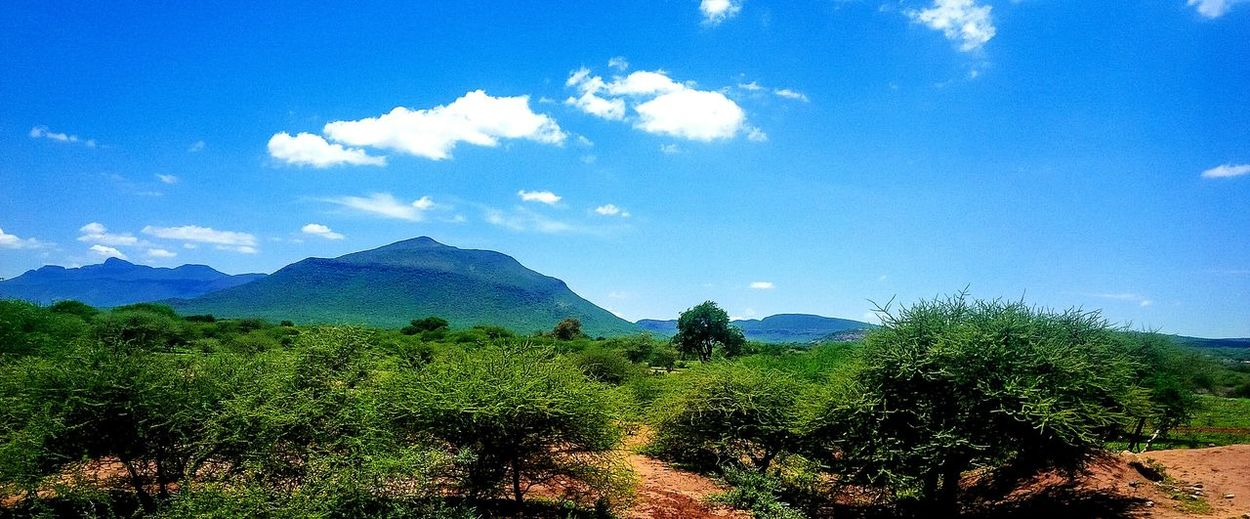 Landscape Mountain Beauty In Nature Bushes South Africa, Mzansi Limpopo Polokwane Blouberg Sekhung EyeEm Nature Lover EyeEm New Here EyeEm Gallery Mythgraphix Visuals
