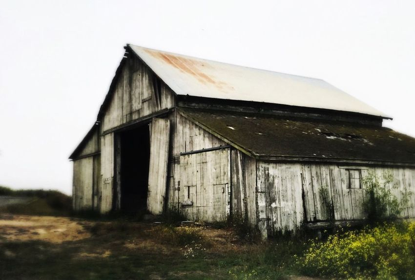 Built Structure Architecture Abandoned Building Exterior Barn House No People Weathered Clear Sky Outdoors Day Sky Dairy Farm Pt. Reyes National Seashore Marin County CA