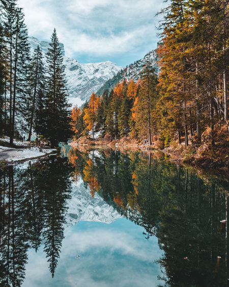 Reflection of trees on lake braies during autumn