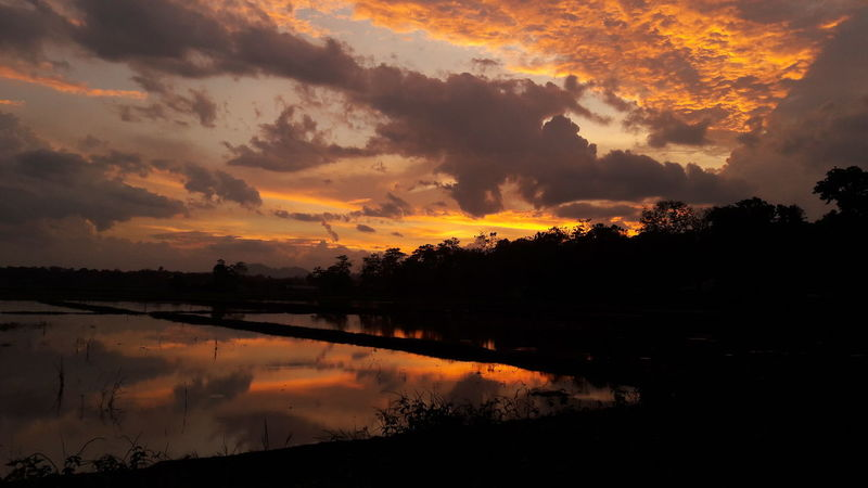 Sunset and darkness Sunset Landscape Reflection Nature Dramatic Sky Beauty In Nature Outdoors Scenics Water Nature Photography Shadow Mirrored Orange Colorful Blastofcolours Ricefield Ricepaddies Philippines Rural Scene Rural Landscape Farmer's Life No People Sky Awesome_view Still