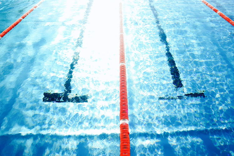 Aquatic Sport Athlete Competition Competitive Sport Day High Angle View Nature Outdoors People Real People Speed Sport Swimming Swimming Lane Marker Swimming Pool Water Waterfront