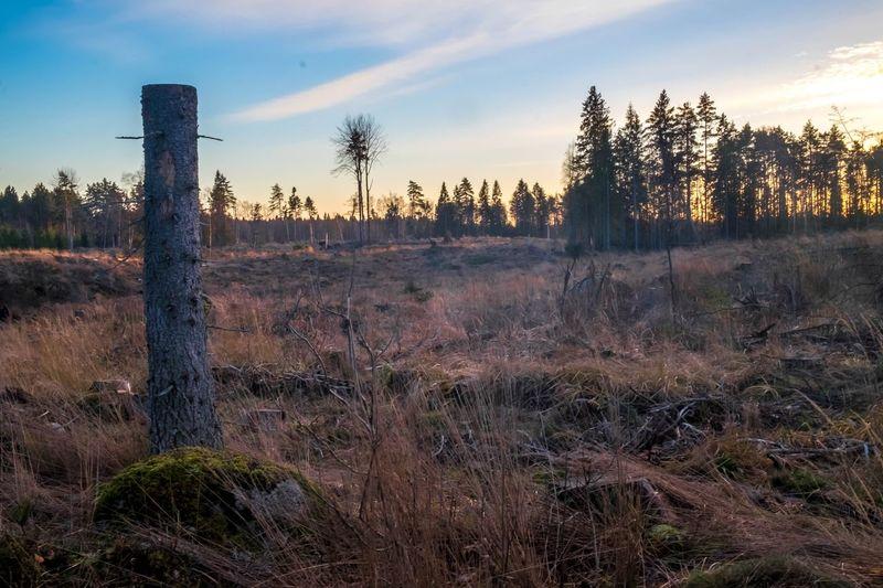 Sweden Outdoors