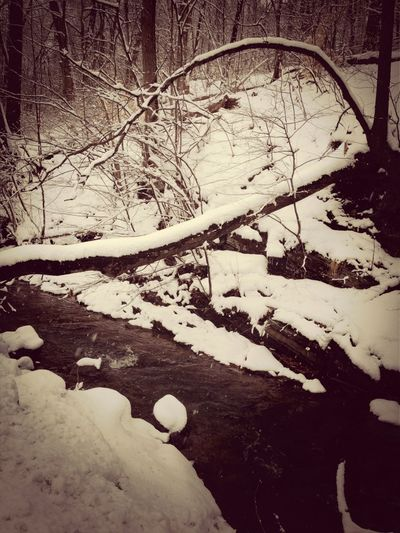 Water Nature Snow Outdoors