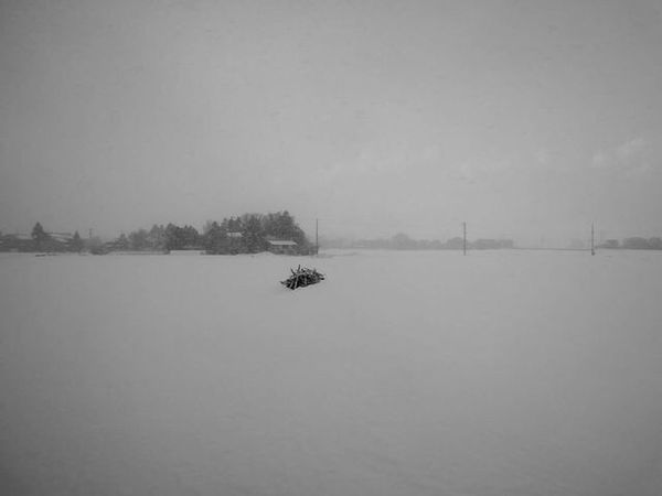 Winter Snow Cold Temperature Tranquil Scene Beauty In Nature No People Frozen Snowing Scenics Monochrome Blackandwhite Photography Nigata Nikonphotography Non-urban Scene Rural Scene EyeEmNewHere Snap Snapshot Snapshots Of Life
