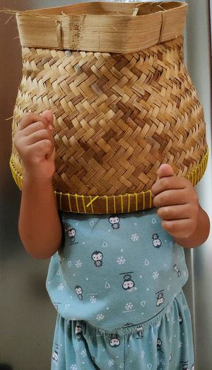 Boy covering face with basket at home