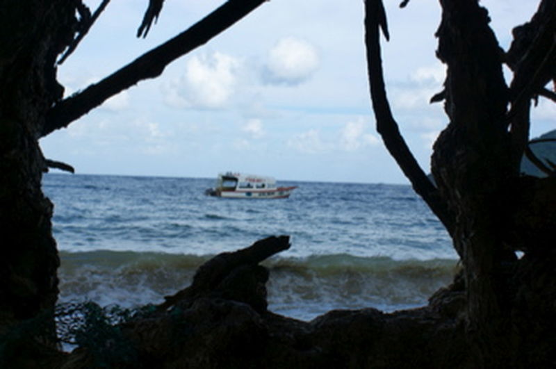 Beach Beauty In Nature Boat Framed By Trees Horizon Over Water Scenics Sea Tobago Beach Travel Destinations