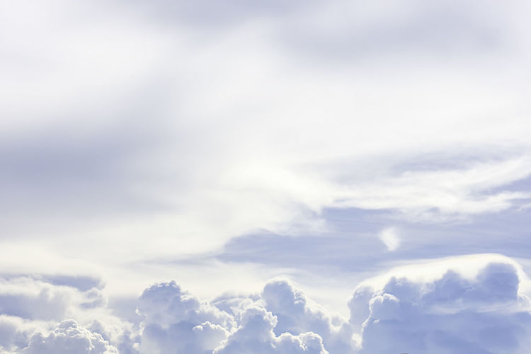 Rain clouds and birds are flying in the blue sky. Air Background Beautiful Beauty Blue Bright Clear Cloud Clouds Cloudscape Cloudy Coast Coconut Color Colorful Concept Cumulus Day Happy Heaven High Holiday Horizon Landscape Light Natural Nature Outdoor Palm Scenic Season  Sky Space Summer Sun Sunlight Sunny Sunset Sunshine Text Travel Tree Vacation View Wallpaper Water Weather White Word Yellow