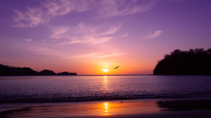 Beach Sunset Costa Rica EyeEmNewHere Guanacaste  Lanscape Photography Reflection Beach Bird Clouds And Sky Lanscape Pacific Ocean Playa El Jobo Purple Sand Shillouette Sun Set Sundown Sunset Sunset #sun #clouds #skylovers #sky #nature #beautifulinnature #naturalbeauty #photography #landscape Water