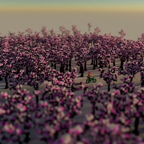 There you are! Bycicle Flower Flowering Plant Plant Pink Color Selective Focus Crowd Architecture Nature Outdoors High Angle View
