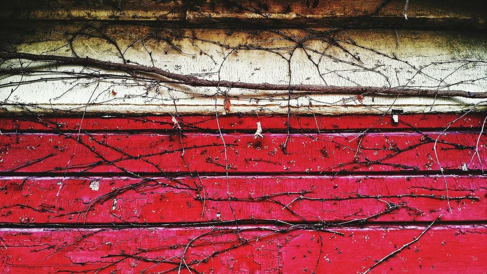 Texture Surface Structure Roofline Cracking Surfaces Angles And Lines Abstractions In Colors Old Vines Things I See Streetphoto