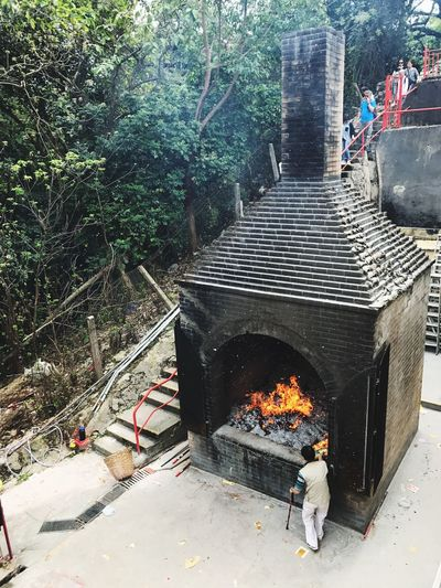 Chinese Tradition Heat - Temperature Burning Flame Tree Men Real People Outdoors Day People Ching Ming Festival Hong Kong Graveyard