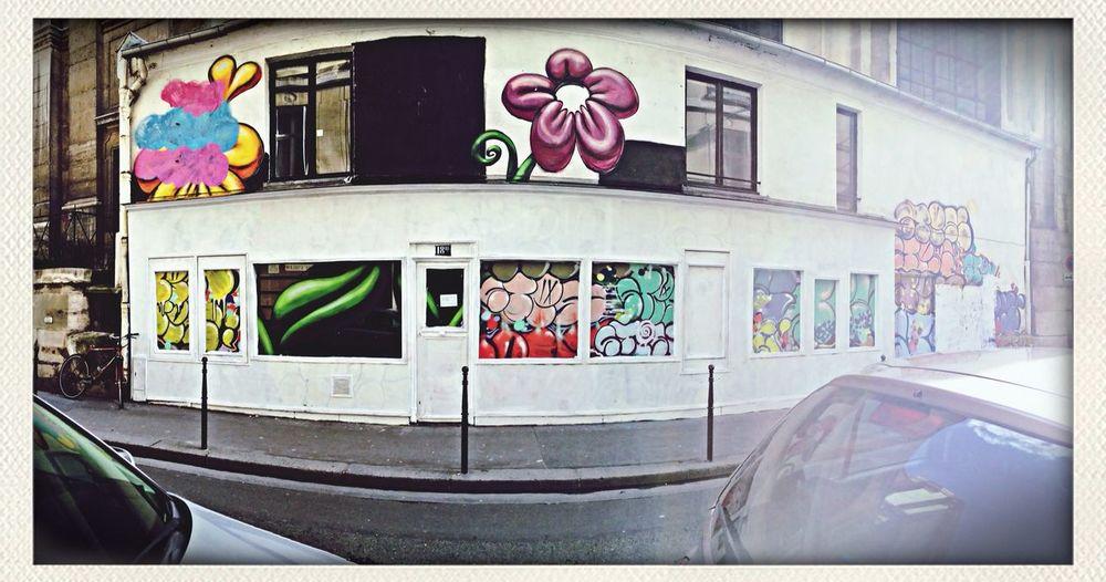 Panoramique Flowers Graffiti Graff City
