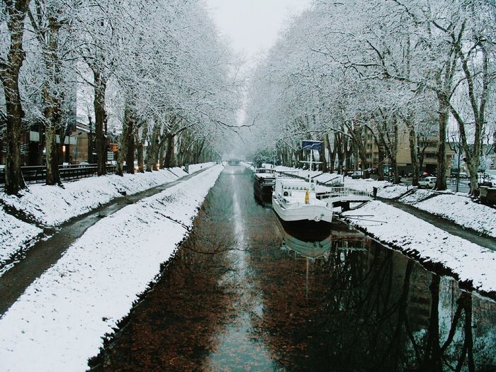 Snow Covered Canal Amidst Trees During Winter