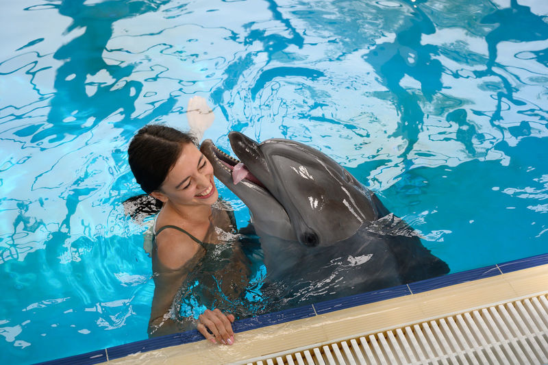 High angle view of smiling young woman with dolphin swimming in pool