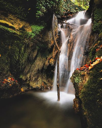 Little waterfall Wasserfall Cascade Tree Plant Water Motion Nature Sunlight Day Long Exposure Waterfall Outdoors Beauty In Nature Flowing Water Forest Splashing Scenics - Nature EyeEmNewHere