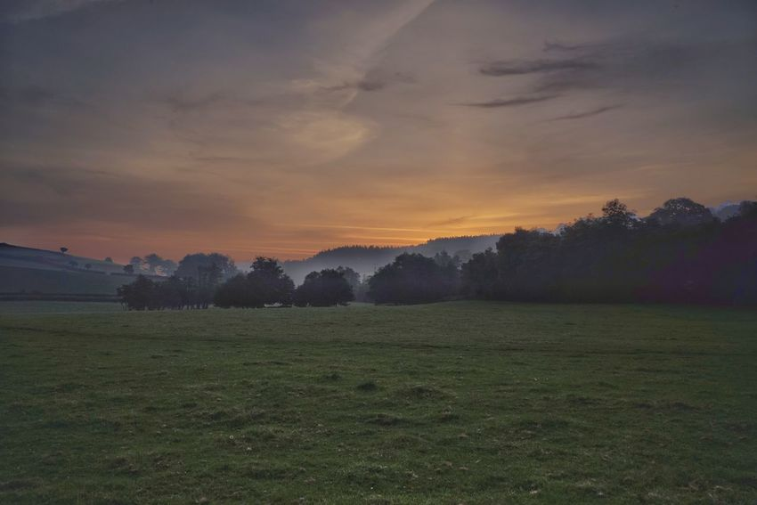 Agriculture Sunset Sun Field Morning Tree Landscape No People Rural Scene Sky Outdoors Green Color Sunlight Nature Beauty In Nature Scenics Freshness