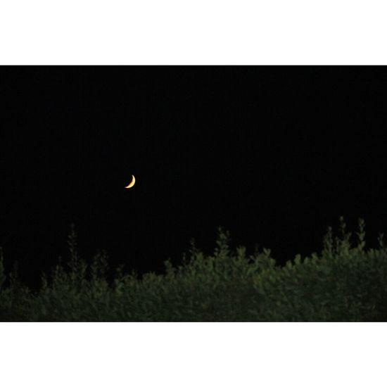 """Guarda che luna"" ?? Moon Goodnight Night ✌"