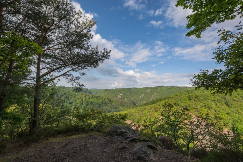 Blick ins Saartal. Ausblick Beauty In Nature Day Flora Forest Forest Photography Frühling Growth Hinking Landscape Nature No People Outdoors Relaxing Saar Saarland Saarschleife Saartal Scenics Sky Spring Tranquility Tree Valley Vegetation