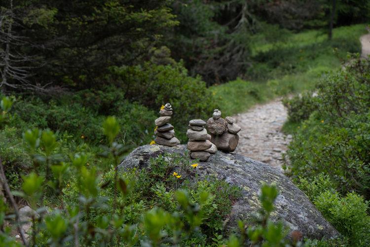 Statue of buddha on rock
