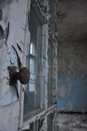 Abandoned Animal Themes Architecture Bad Condition Close-up Damaged Day No People Outdoors