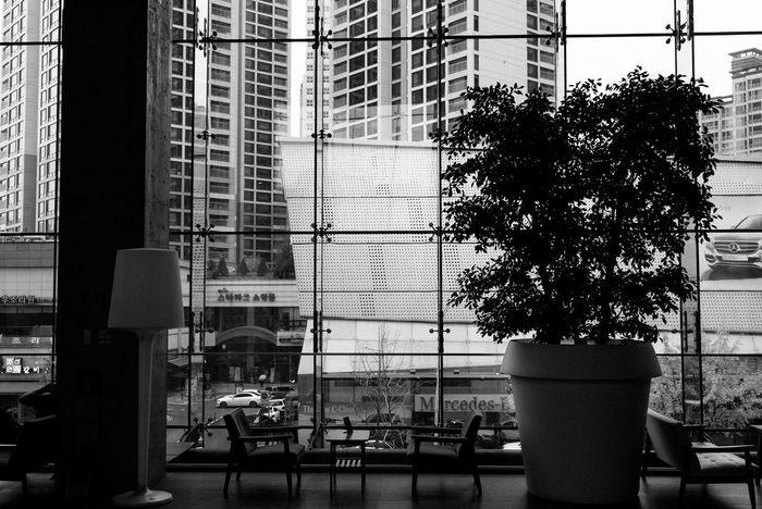 Rest Black & White Monochrome Window EyeEm Korea Silence