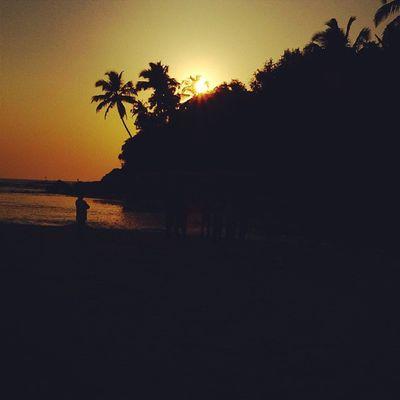 Ngma Goa Beach Palm Trees Puneinstagrammers Punediaries Sunset Waycoolshots Insta_vibrant Instacool Bestshots Photopport_unity Photodrobe Rsa_light Afadingworld PickMyGoaPic