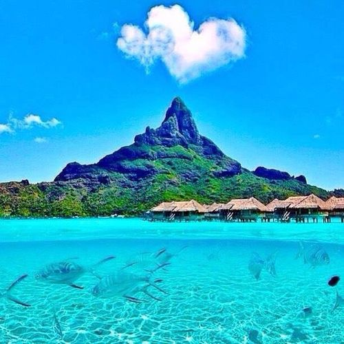 Bora Bora in French Polynesia 💙💙❤️❤️ Last picture for today 😀 Hello world 😱 Water Sea Travel Nice Places  Amazing View Cool Picture I Love Travel Hello World ❤ First Eyeem Photo Real Picture You Follow My Eye Em 💙 I Follow Back Picture Very Nice 😱😱