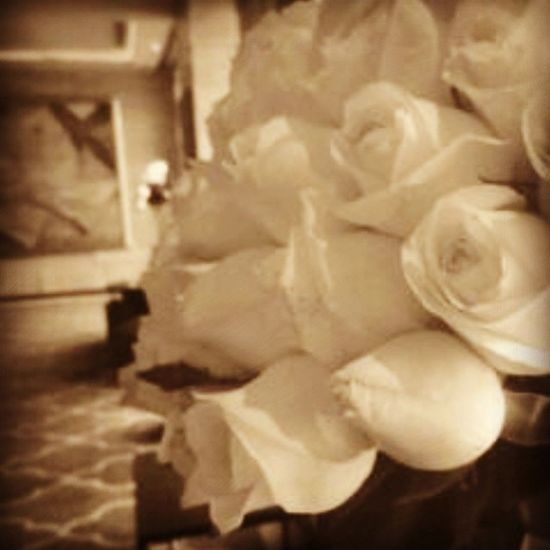 Roses WhiteRoses Purity Symbolism Jwmarriot Marriothotel Throwback Onewintersevening Twoyearsago Singing Flowers Floraldecoration Beautiful Floral FlowerArranging Whiteflowers Allthingswhite White Instawhite Instaflowers