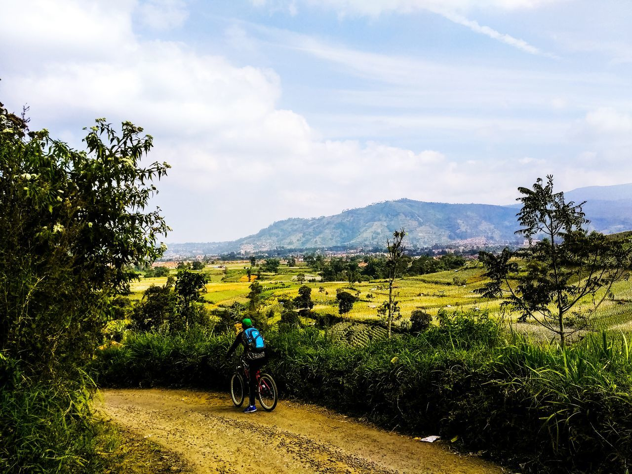 riding, transportation, bicycle, sky, landscape, tree, nature, field, land vehicle, men, cycling, real people, mountain, day, rear view, one person, road, motorcycle, mode of transport, growth, leisure activity, cloud - sky, beauty in nature, scenics, outdoors, full length, helmet, adventure, lifestyles, cycling helmet, grass, biker, motocross, people
