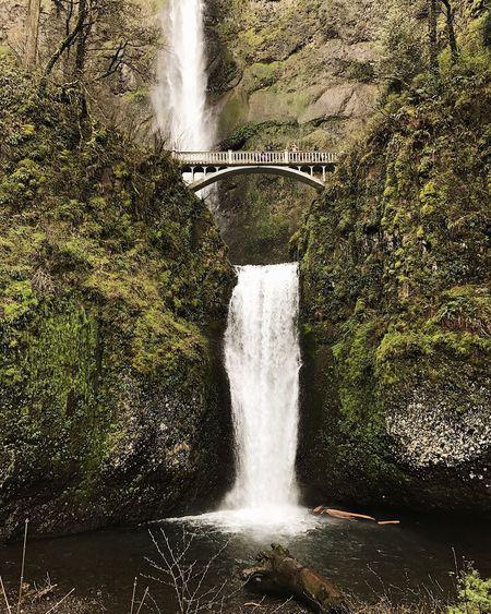 Multnomah Falls  Oregon Waterfall Pacific Northwest  Nature