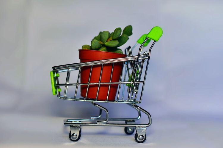 Shopping cart Vegetable Ecology Shop Flower Top Plants And Flowers