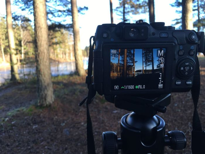 Close-Up Of Camera Photographing Trees