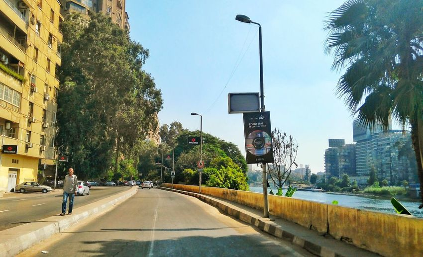 City Tree Architecture Building Exterior Built Structure City Life Outdoors People Modern Travel Destinations Sky Real People Adult Adults Only Skyscraper Day Cityscape Urban Skyline Only Men Freshness Clear Sky Downtown District City Life This Is Egypt ❤ Scenics