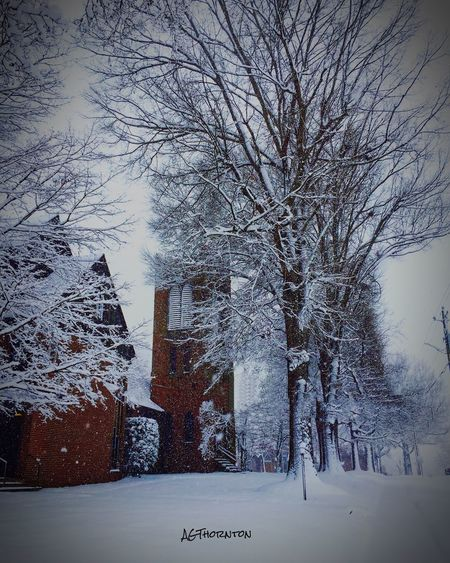 #wintertime #churches Cold Temperature Tree Weather Bare Tree Nature Beauty In Nature Snowing