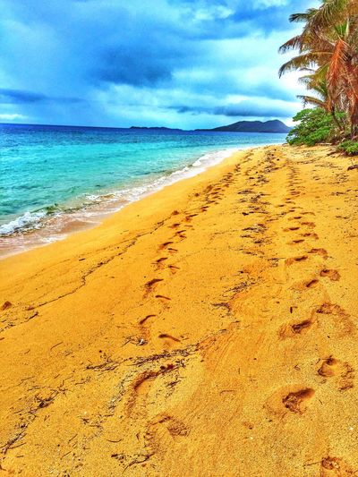 alone together Beach Footprints Island Sand Ocean Palm Trees Stranded