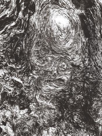 Driftwood Driftwood Art Face Blackandwhite