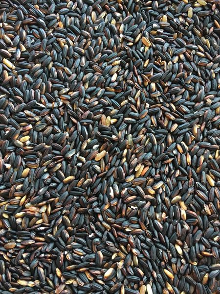 Large Group Of Objects Abundance Food And Drink Food Backgrounds Full Frame Brown Repetition No People Close-up Seed Freshness Coffee Bean Day Black Rice Black Glutinous Rice