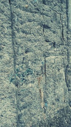 Q Berlin Wall Division Segregation  Frontier