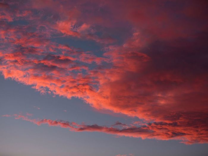Low angle view of orange clouds in sky