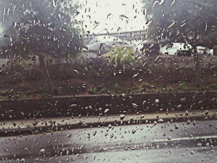 Rain Winter Wandering Around Aimlessly