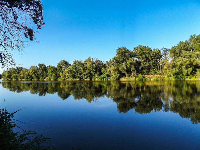 Reflection Of Trees In Lake Against Clear Blue Sky