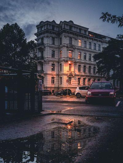 Evening Walk @