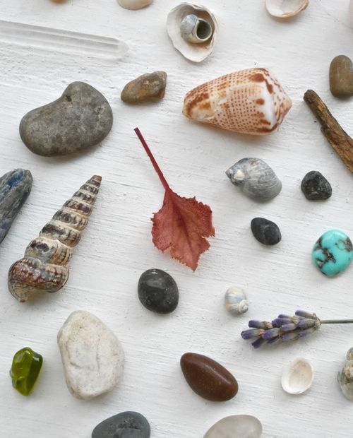 Natures gifts Art Is Everywhere Arts And Crafts Collecting Creativity Herbs Natural Light Shells🐚 Simple Things In Life Arranged Objects Arrangement Collection Decorations Elements Of Nature Holistic Lavender Leaf Mindfulness Moment Natural Objects And Things Natures Beauty Organic Quartz Crystals Simplicity Stones And Pebbles White Background On Wood Zen