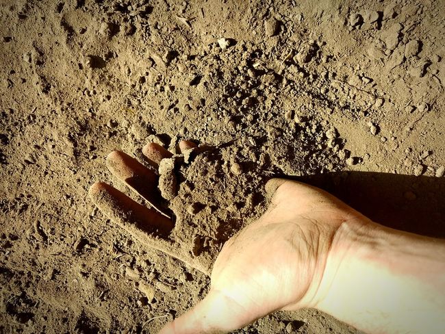 Dead soil. Human Hand Human Body Part Soil Soil On The Ground Dirt Arid Dead Earth Close-up Day Outdoors Sterile Forgotten Forgotten Places  EyeEmBestPics EyeEm Gallery